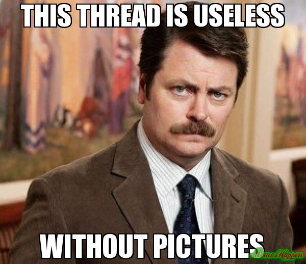 Name:  this-thread-is-useless-without-pictures-meme-9253.jpg